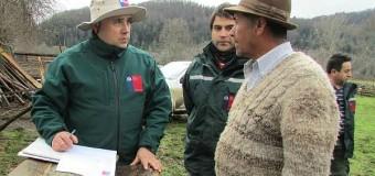 Atención Agricultores: SAG recuerda realizar la Declaración de Existencia Animal