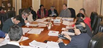 Concejo aprueba recursos para emblemático comité de vivienda de Coñaripe