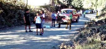 Hombre muere atropellado en sector Chan Chan en la ruta Lago Neltume a Liquiñe