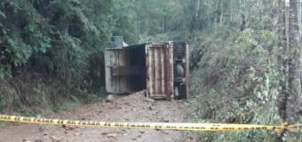 Chofer de camión municipal de Lanco falleció en sector Hueima esta mañana
