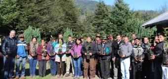 Apicultores de Liquiñe cumplen primera etapa de reforestación con árboles melíferos