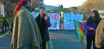 Se logra preacuerdo en Tranguil | Superintendencia Ambiental deberá fiscalizar obras de Mini Hidro