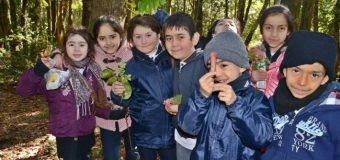 Niños de Neltume, Puerto Fuy y Choshuenco aprenden sobre Flora Nativa gracias a un Fondo de Protección Ambiental