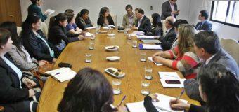Asistentes de la educación de Panguipulli llegaron a Santiago a plantear sus inquietudes