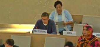 Denuncian en la ONU incumplimiento de Convenio 169 por central de RP Global en Tranguil