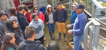 Alumnos de Liceo Agrícola y Forestal de Pullinque visitaron lechería robotizada