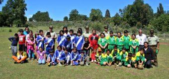 Niños de Dollinco y Pitrén disfrutaron del deporte gracias a Copa de la Amistad organizada por Carabineros