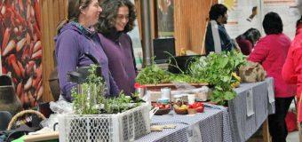 Finalizan primer año de exitoso programa de Huerta Mapuche