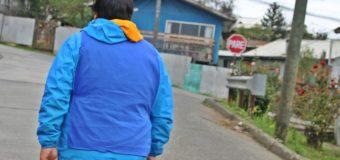 100 Funcionarios Municipales salieron a las calles a finalizar el Censo en Panguipulli