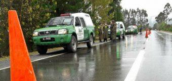 Mujer murió luego de atropello en ruta Lanco – Panguipulli