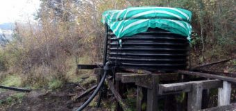 Emergencia sanitaria en Puerto Fuy por presencia de Escherichia Coli en agua de consumo humano