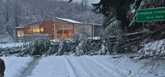Cierran paso Hua Hum por acumulación de nieve y caída de árboles
