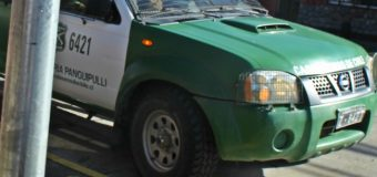 """Sujetos intentaron abusar de estudiante que """"hacía dedo"""" en Pullinque"""