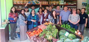 Productores hortaliceros de Valdivia viajaron a Paraguay a conocer nuevas experiencias en el rubro