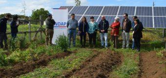 Proyecto de riego por goteo mejora calidad de vida en sector Tronlico de La Unión