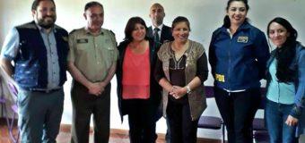 """Dirigentes envían carta a Ministro del Interior: """"Panguipulli dejó de ser un lugar apacible"""""""