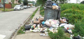 Municipio anuncia retiro definitivo de contenedores de basura a partir de enero próximo