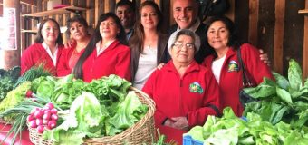 Mujeres emprendedoras de Río Bueno se atrevieron con Energías Renovables No Convencionales