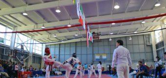 """Con éxito finalizó concurrida edición del Campeonato de Taekwondo """"Copa del Lago"""" 2018 en Panguipulli"""