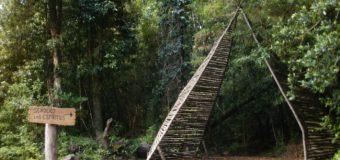 """Rescatan a turistas """"desorientados"""" en Reserva Huilo Huilo en Neltume"""