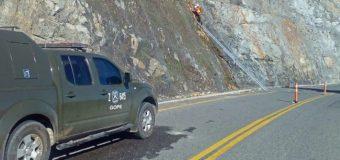Gope retiró carga explosiva hallada por trabajadores en Coñaripe
