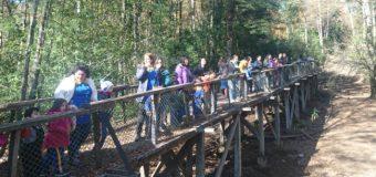 Alumnos de la Escuela Especial de Lenguaje Rayito de Luz realizaron visita a Huilo Huilo en el día del patrimonio
