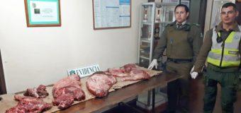 Carabineros detiene a dos mujeres y un hombre por abigeato sector rural de Lanco