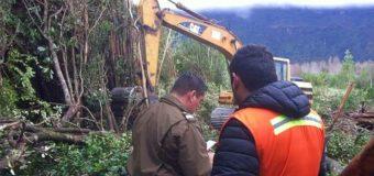 Denuncian nueva destrucción presuntamente ilegal de humedal en Coñaripe