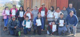 "Finalizó exitoso taller de idioma mapuche ""Recuperando la Cultura"" en Coñaripe"