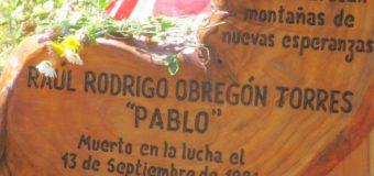 """Denuncian destrucción de Memorial en Neltume y piden al Gobierno """"tomar medidas"""""""