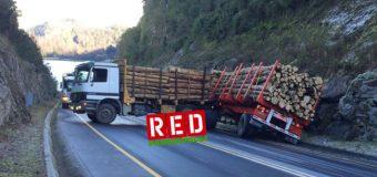 Incidente con camión maderero obstaculiza el tránsito en sector Toledo de la ruta Ch-203