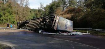 Accidente de tractocamión con reparto de CCU deja un lesionado camino a Los Lagos