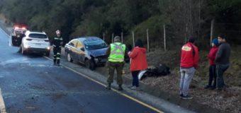 Fin de Semana | Hielo en la calzada habría originado accidente en sector Toledo de la ruta Ch-203