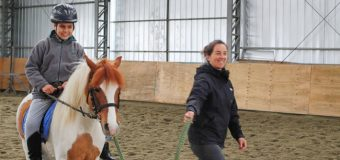 Inició el Taller de terapia con caballos de la Escuela Rural de Huellahue