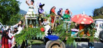 """Para fines de Octubre está programado el """"Festival de la Primavera"""" en Neltume"""