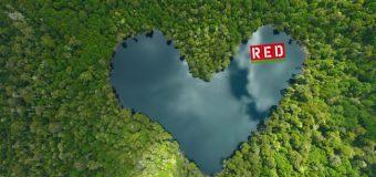 Una laguna con forma de corazón en Liquiñe