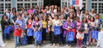 90 usuarias de Panguipulli fueron apoyadas por el FOSIS en capacitación