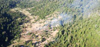 Incendio forestal de Mili Mili en las cercanías del P.N. Villarrica está controlado y en observación