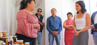 Destinan fondos a agrupación de perma apicultores Wallmapu de Panguipulli