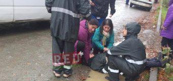 Trasladan a Valdivia a mujer que fue atropellada en Neltume esta mañana. Conductora fue detenida