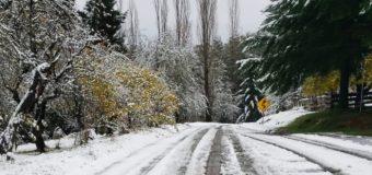 Paso habilitado: Carabineros fiscaliza uso obligatorio de cadenas tras caída de nieve en Pirehueico