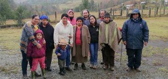 En Liquiñe, Fosis apoyará producción de avellana de emprendedores de Trafún Chico