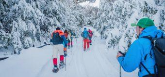 """Huilo Huilo quiere promover actividades en la nieve con el Tercer Encuentro """"Entre Lengas"""""""