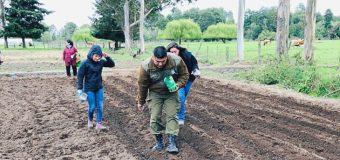 Patrulla PACI participó en siembra de Quinoa en Río Bueno