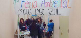 """Escuela Lago Azul de Puerto Fuy realizó primera Feria Ambiental y """"mateada por la historia"""""""