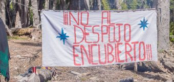 Comunidades mapuche buscan impedir intervención de Conaf en P.N. Villarrica