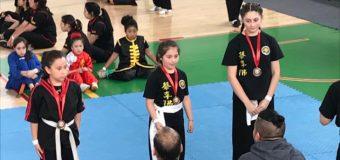 Escuela de Artes Marciales de Neltume destacó en certamen internacional en Lautaro