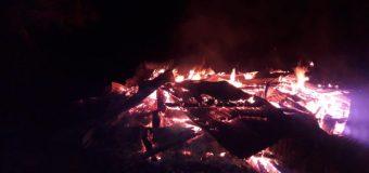 Bomberos hallaron cuerpo calcinado tras incendio en Pullinque Alto