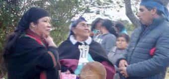 Crónicas de Muñozo: Marta, una mapuche a prueba de virus