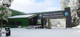 Preparan protocolo ante eventual apertura de parques y reservas nacionales
